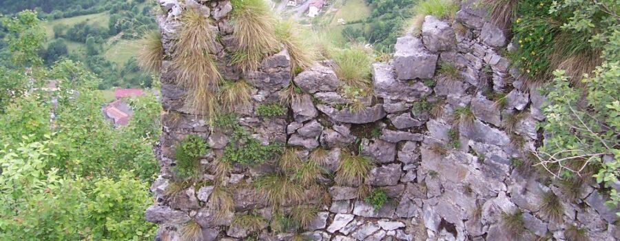 Escursione Torre Castello di Lozio Valle Camonica (8)